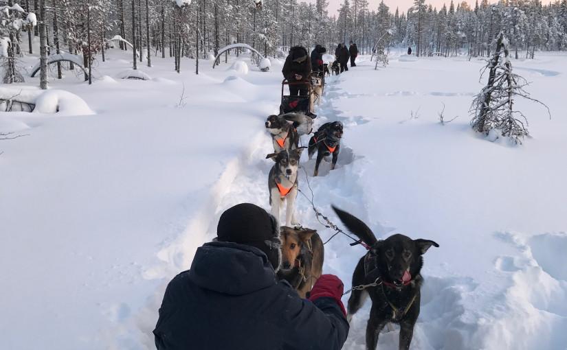 Het beste wat ik geleerd heb in Lapland